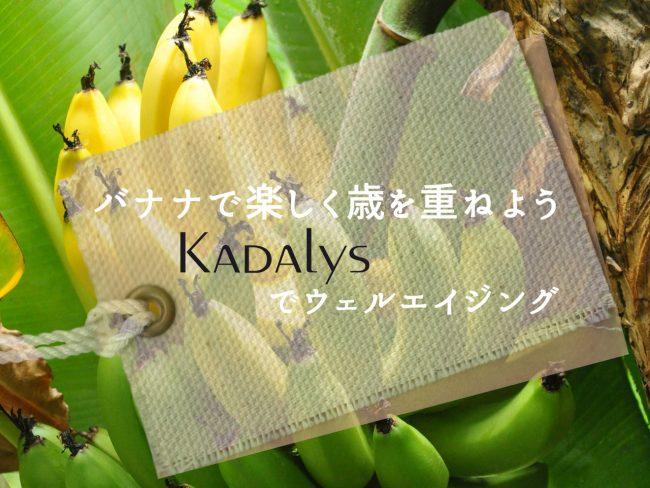 バナナで楽しく歳を重ねよう〜KADAlysでウェルエイジング〜