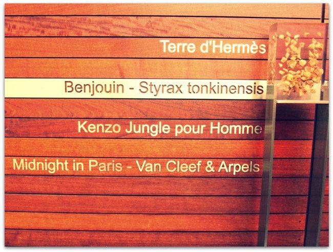 ヴェルサイユの新スポット「香りの中庭 Cour des Senteurs」