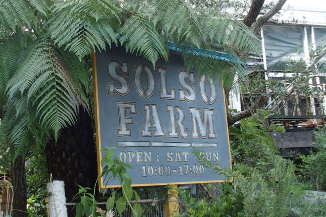 SOLSO FARM