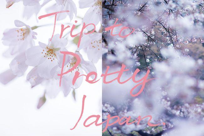 いよいよ春。いよいよ私。Trip to PRETTY JAPAN Spring Festival 「粋」2017