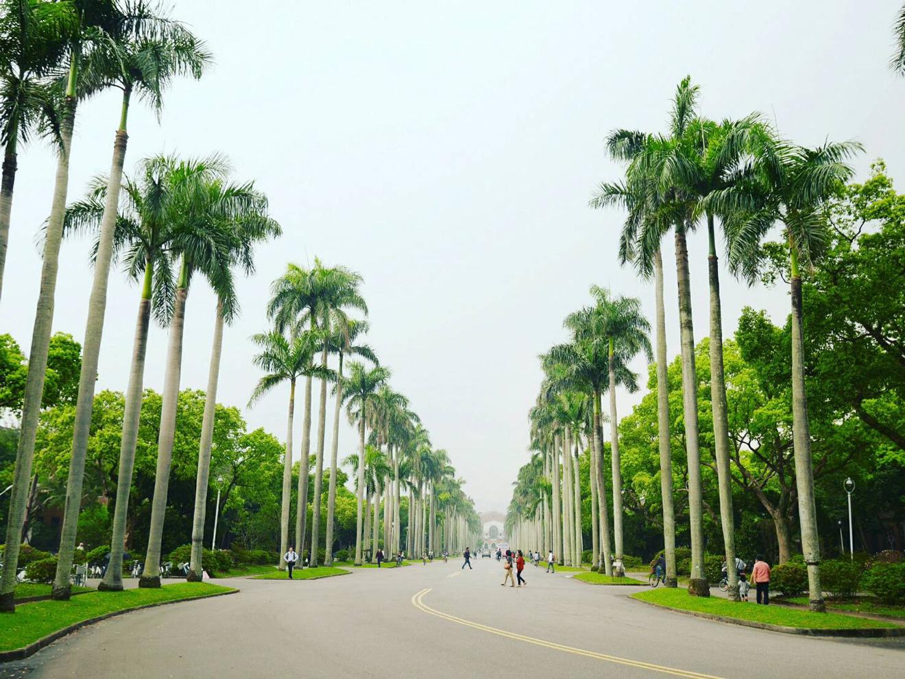 台北でお腹が空いたらつい足が向いてしまうとにかくお気に入りの街、公館
