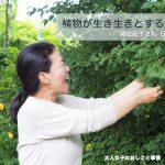 植物が生き生きとする庭を 岡佐紀子さん(淡雪園)