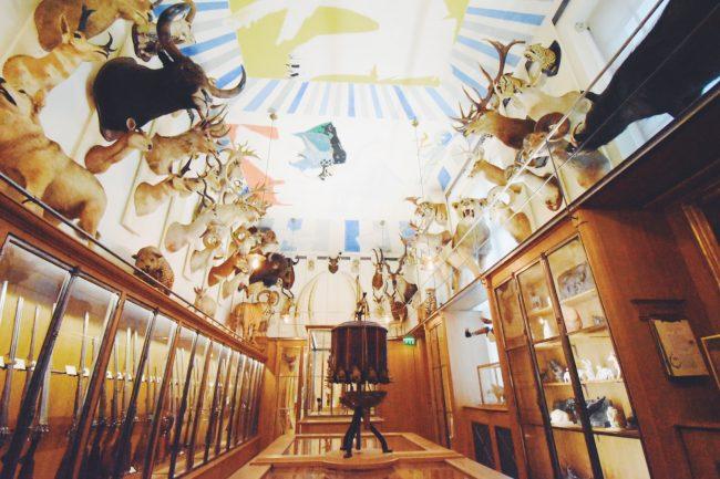 パリで狩猟の歴史を学ぶ—「狩猟自然博物館」