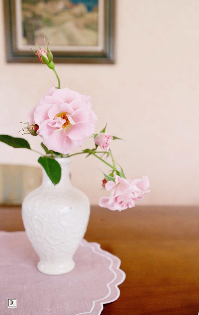 ピンクのミニバラと白い花瓶