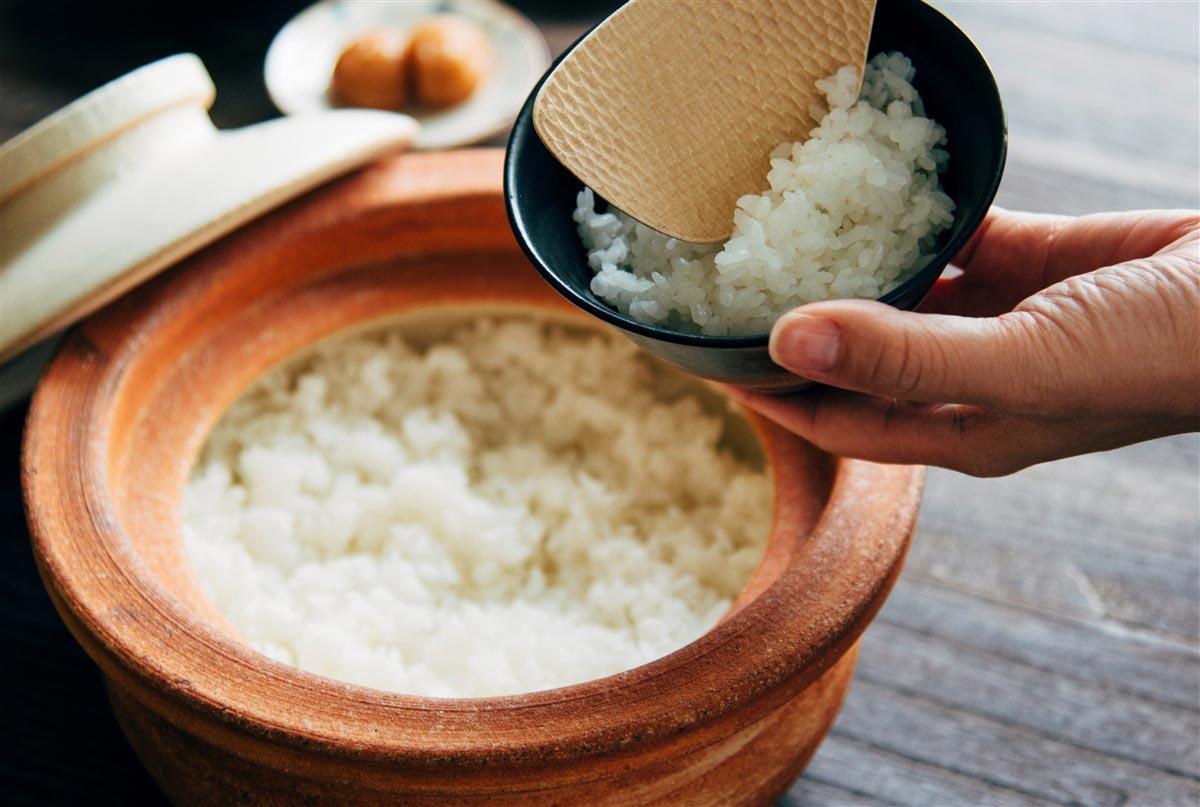 石川県能美市産 ひゃくまん穀