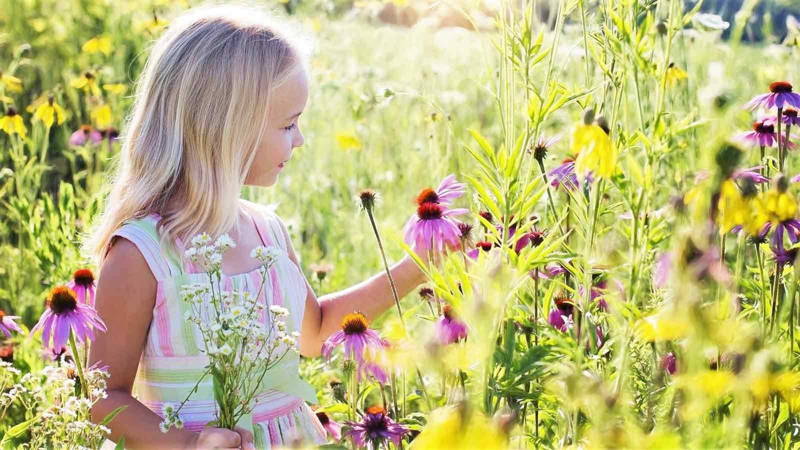 お花畑にいる少女