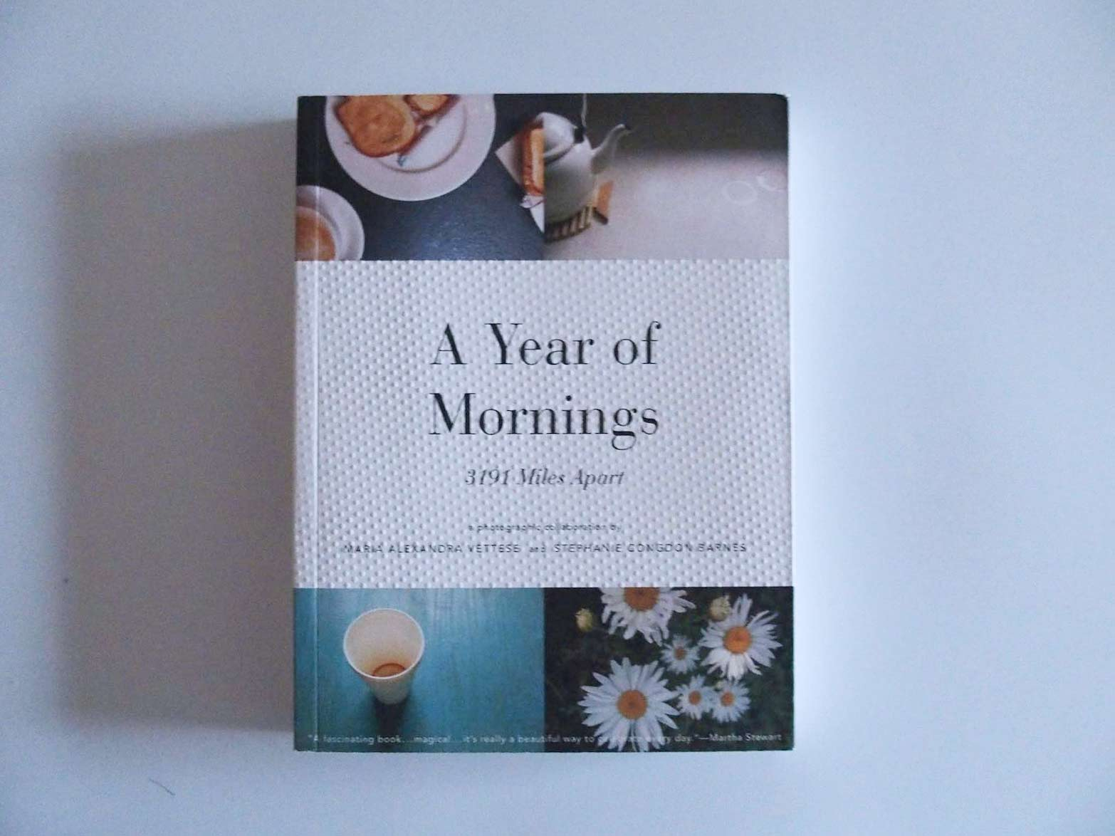 A Year of Mornings