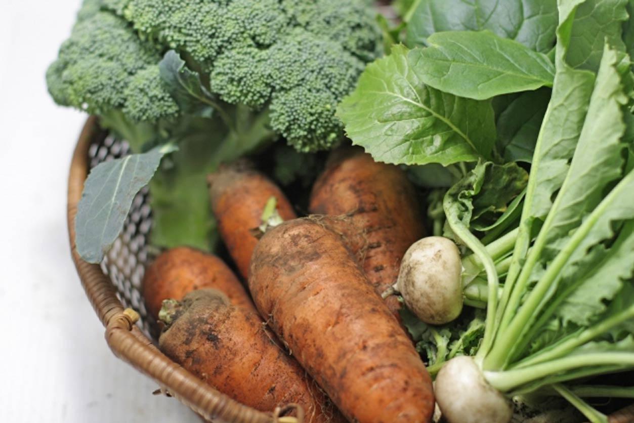 冬におすすめの野菜